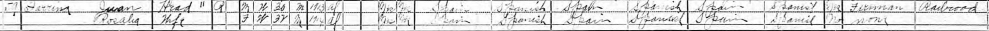 1920 Census (cropped)
