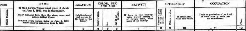 1925 NYS Census Heading
