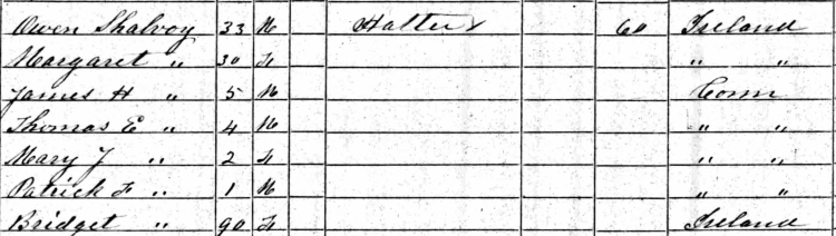 1860 Census (cropped)